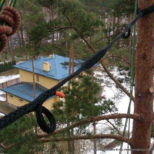 Koka drošības sistēma Cobra