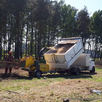 Koksnes atkritumu šķeldošana un izvešana